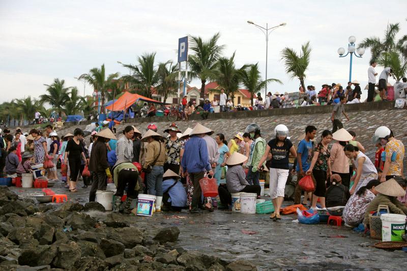 Buổi sáng cùng những người phụ nữ ở chợ cá