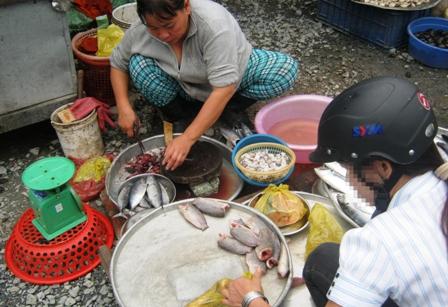 Thịt ôi, cá ươn vào nồi cơm sinh viên